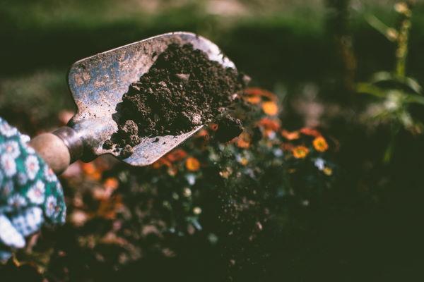 digging gardening