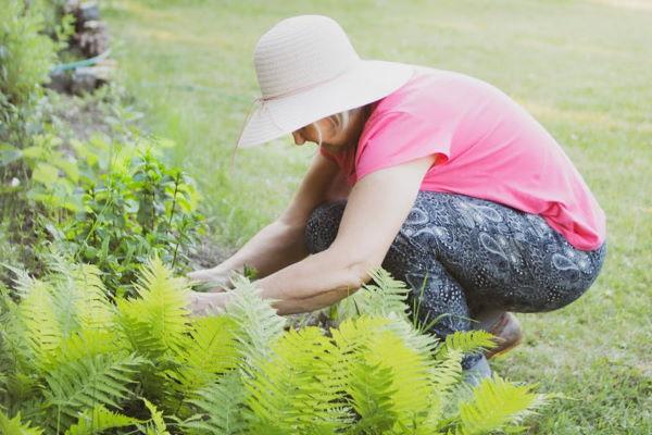 garden exercise